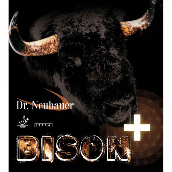 bison+_1