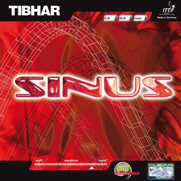 sinus_1
