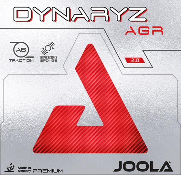 DYNARYZ-AGR_1