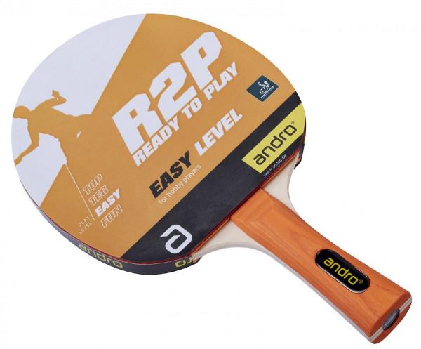r2p_easy_bat_1